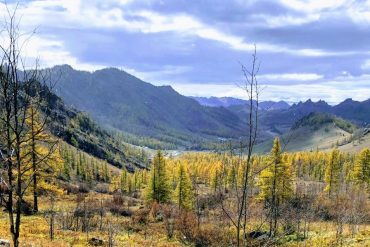View of Gorkhi-Terelj National Park in Autumn