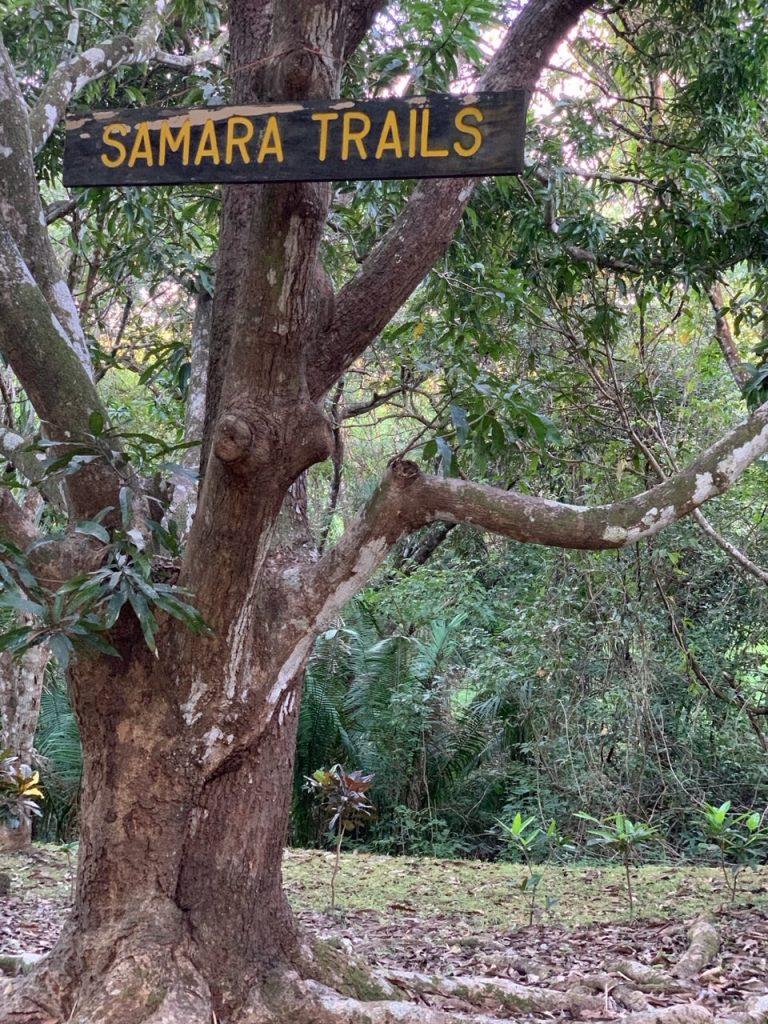 """""""Samara Trails"""" sign in a tree at Samara Trails at Werner Sauter Biological Reserve near Playa Samara, Costa Rica"""